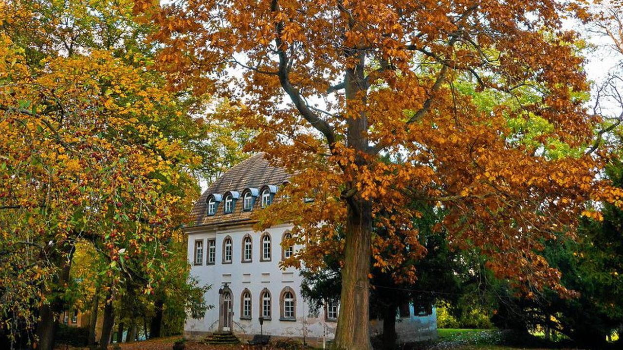 Spaziergang durch Park Tannenfeld