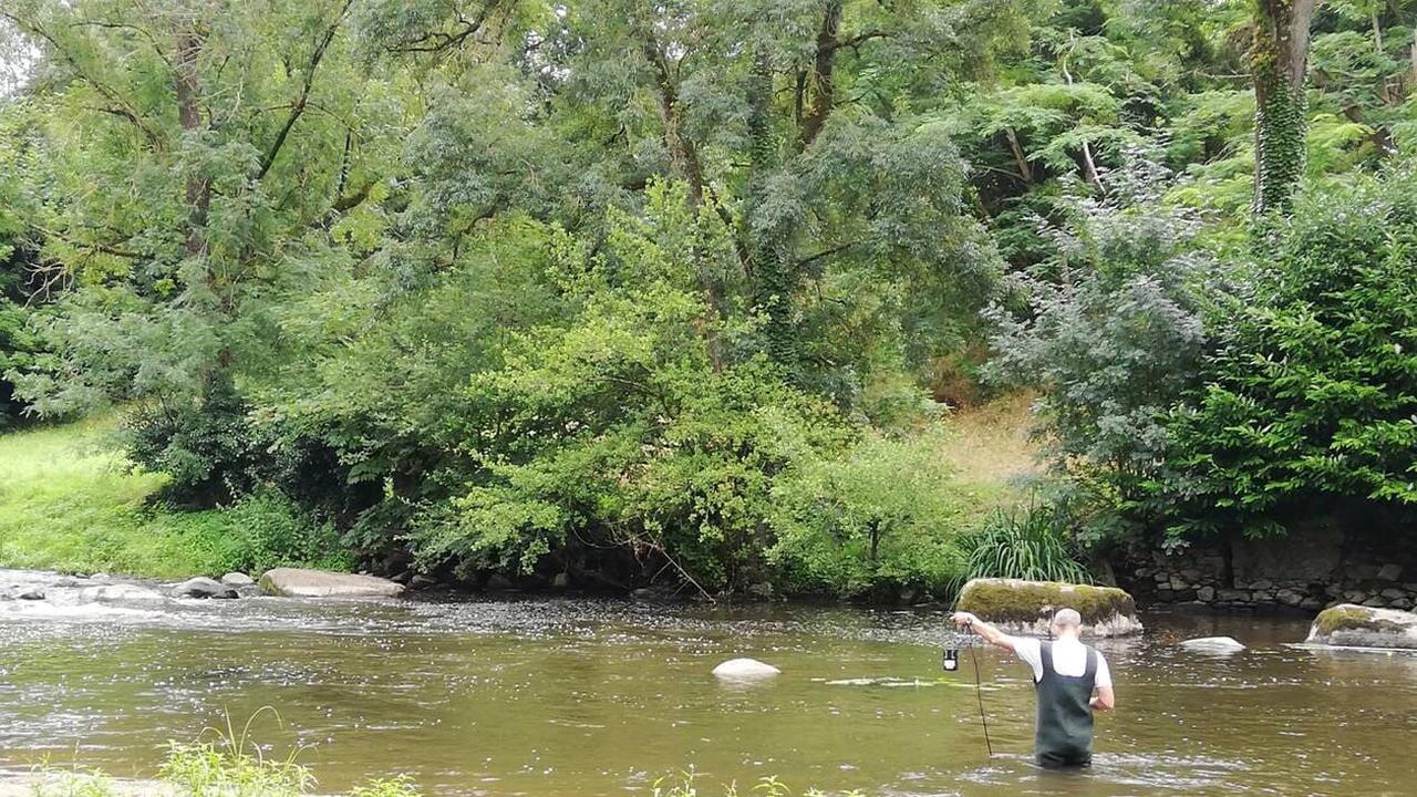Cholet. Pour les rivières, les cyanobactéries ne sont pas un fleuve tranquille