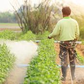 Pesticide Use and the Mechanisms for Chemical Resistance in Farming and Gardening