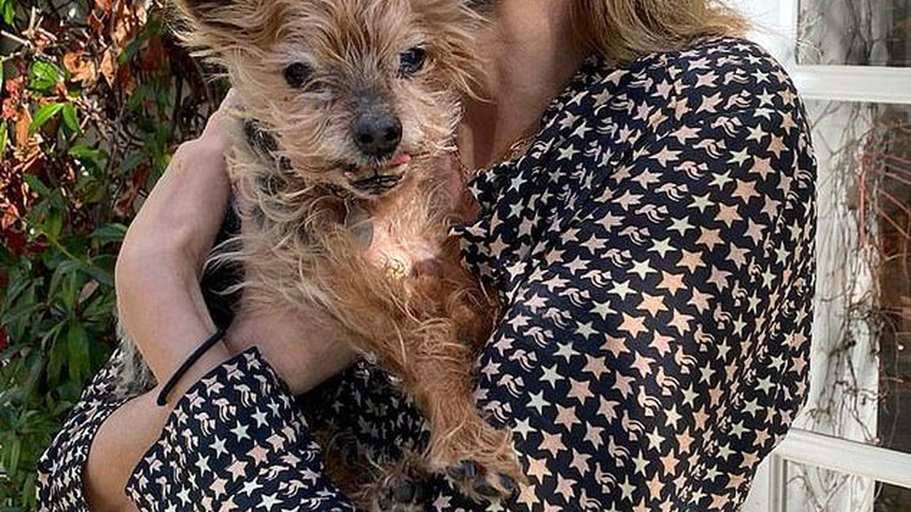 'You'll be living on in my heart and soul forever' Naomi Watts left heartbroken as her beloved dog Bob dies