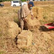 Former PDP National Party Chairman was sighted working in his farm in Bauchi [Photos]