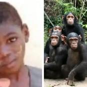 Remembering  The 2 Year-Old Boy That Was Found In The Forest Living With Chimpanzees