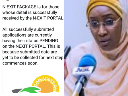 N-Power: Minister Reveals Those Who Are Qualified For Exit Package