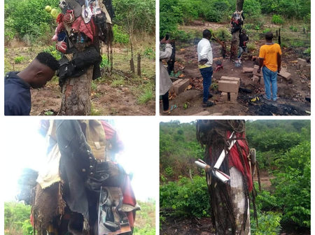 Pictures, Belongings Tied To A Tree In An Evil Shrine