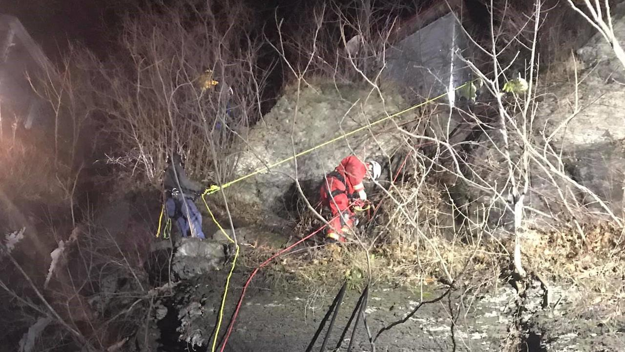 Dog rescued by firefighters after falling down cliff in Moravia