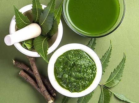 9 Health Benefits Of Neem-Dogonyaro Tree