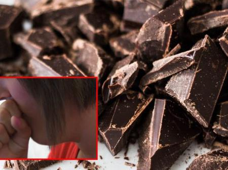 Simple Remedy: Chocolate can Reduce Itchy Throat and Cure Cough as Suggested by Study