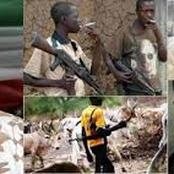 Northern Governor to Fulani: Please Don't Carry AK-47