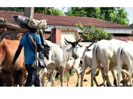 Sad: Herdsmen Nightmare continue as Two Amotekun Personnel Were Killed In An Ambush