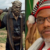 Opinion: A Message To Nnamdi Kanu Over Sending Biafra Soldiers To Benue Due To Bandits Attack.