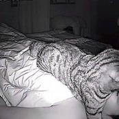 Man Who Could Not Breathe Each Time He Slept, Shared What He Saw After He Installed A Camera.