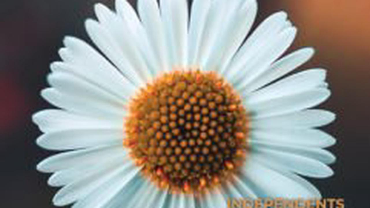 5 Financial Resolutions to Make in The New Year
