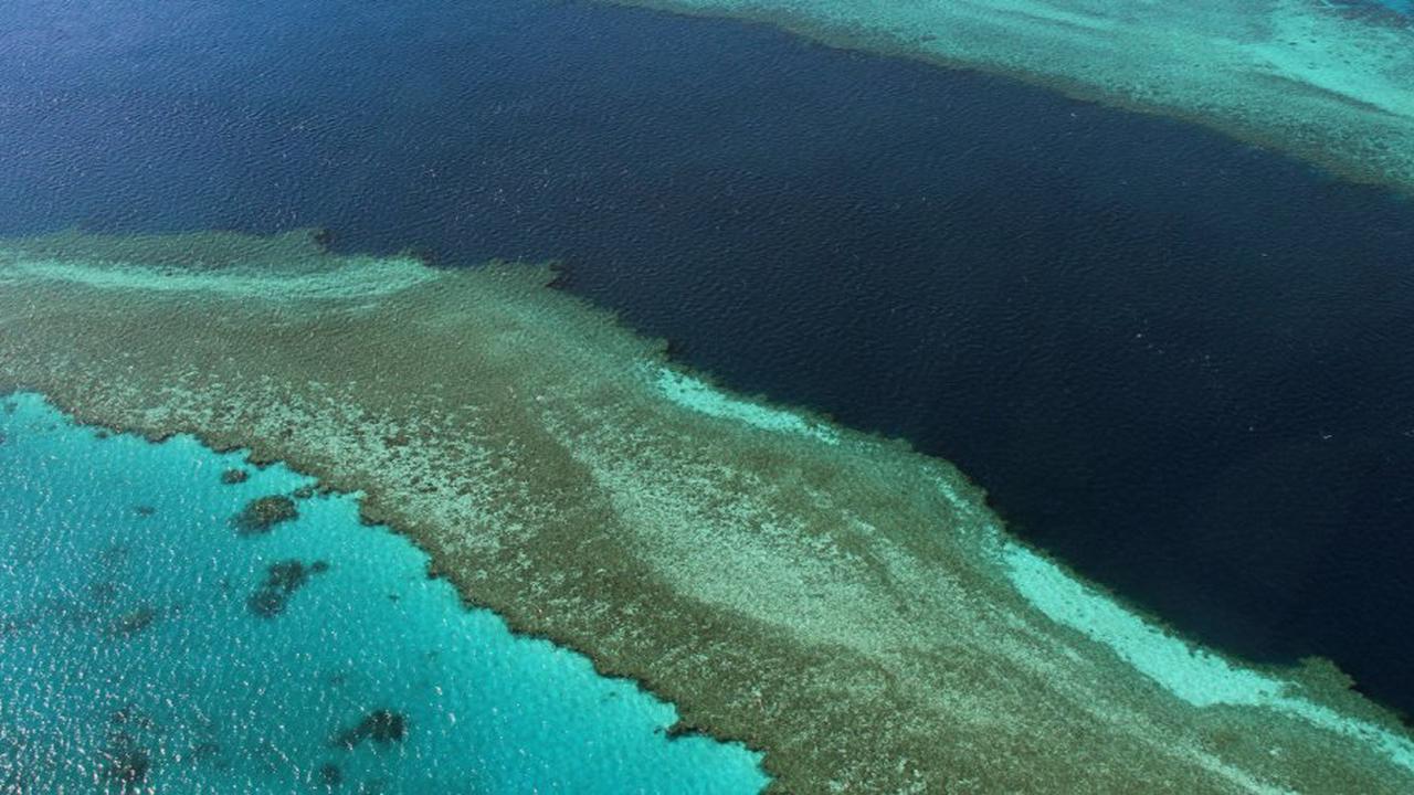 """Weltkomitee beschließt: Great Barrier Reef ist kein """"gefährdetes Welterbe"""""""