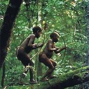 Meet The Mbuti People Who Call Forest
