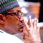 Why President Buhari is Sad Now - Defence Minister Reveals