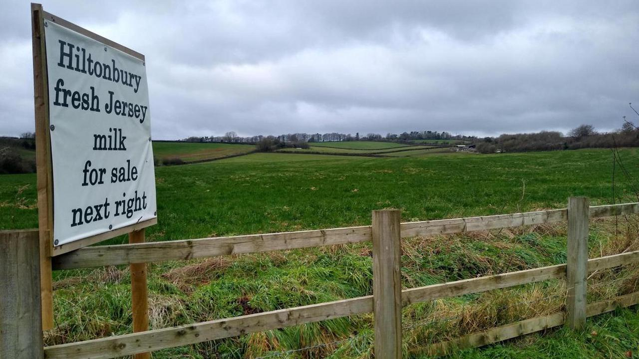 Group urges residents to respond to Local Plan consultation over Royaldown fears