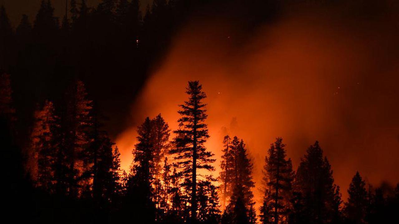 Plus de 8000 km2 incendiés en Californie, un record depuis 1987