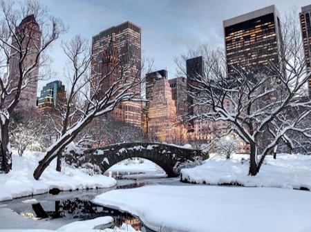 See How Winter Is Causing Havoc In US Major Cities ( 45 photos)