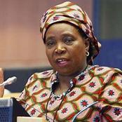 Lockdown: Dlamini-Zuma gives reasons why Cyril Ramaphosa will not lift the alcohol ban soon?