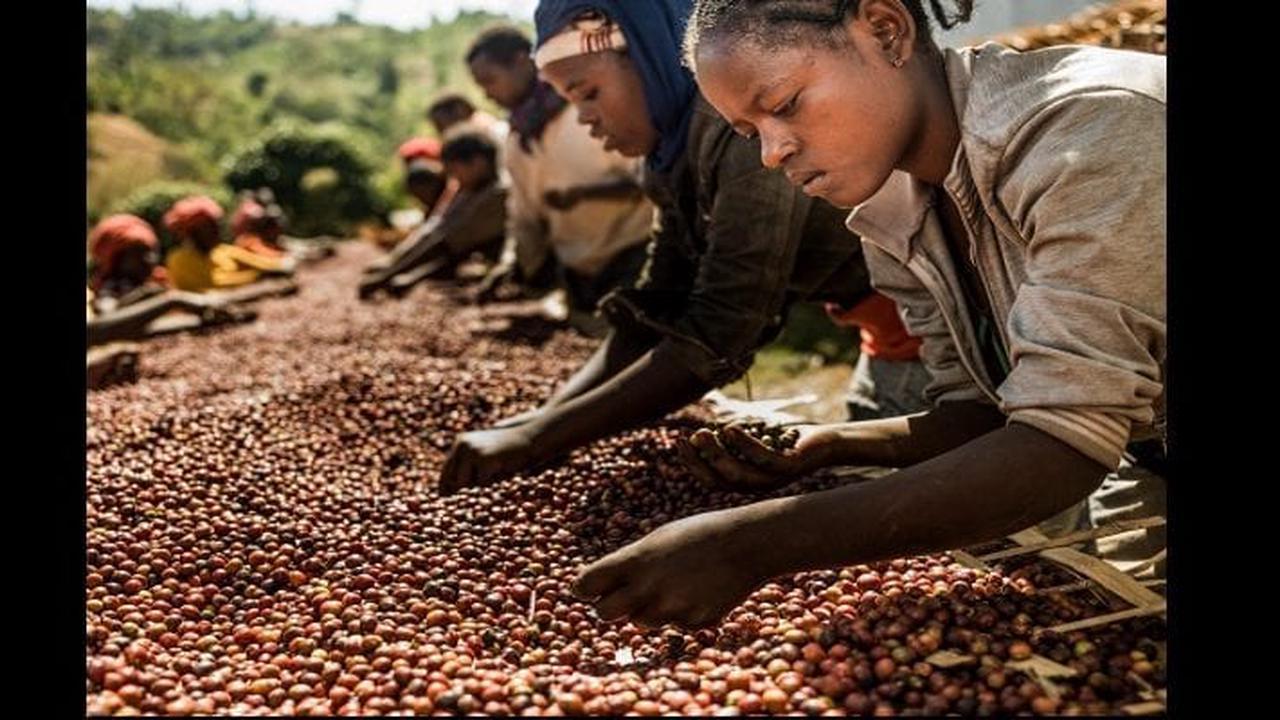 10 innovations importantes qui ont débuté en Afrique avant de se répandre dans le reste du monde