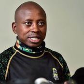 'Stop Zuma attacks, ANC leadership out, Zondo wasting money'