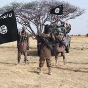 Jihadist Assaulted A UN Base In Borno And Apprehended 25 Workers.