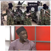 Ex-DSS Director - Bandits Are Boko Haram And Government Knows Them