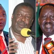 Uhuru, Mudavadi's Names Mentioned in Raila's Possible 2022 Lineup, Babu Owino Dimisses Ruto-Raila Alliance
