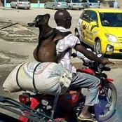 A Photo Of a Man Carrying A Goat on His back Causes Online Stir