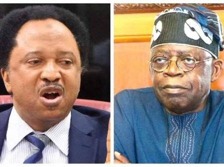 Shehu Sani Tackle Tinubu Over Recruiting 50 Million Armed Soldiers, Read What He Said