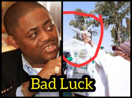 After the Pigeons Refused To Fly Today, See How Fani-Kayode 'Mocked' President Buhari