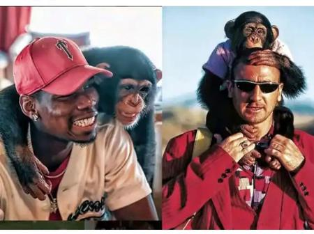 Wildlife Explorer : Four Famous Footballers Who Posed With Monkeys