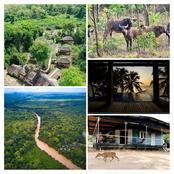 Tourisme / Le Nzi River lodge : que devrait faire les responsables pour attirer plus de touristes?