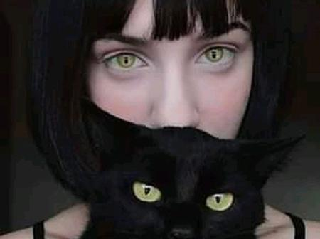 13 Wonderful Things You Dont Know About Your Cat.Number 6 Is Very Funny