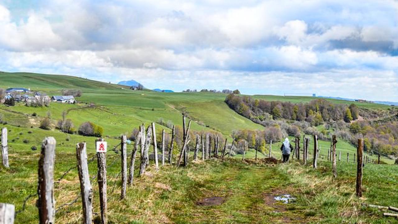 Indiscrétions - Le guide vert Michelin Auvergne-Bourbonnais dans le Top 10 des ventes