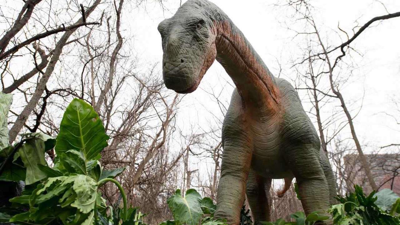 Coming this summer: Louisville Zoo hosting largest robotic dinosaur exhibit