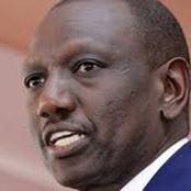 William Ruto Next Tour to Mt Kenya Slams with Mixed Reactions as MP Ngirici Announces Plans