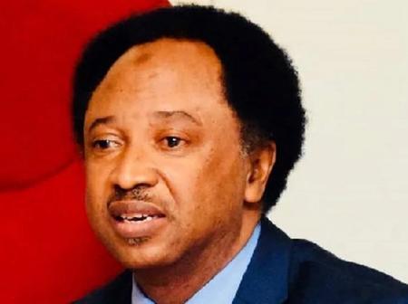 Biafra/Odudwa Agitation: Shehu Sani Sends Strong Message To Buhari's Govt Over Agitators