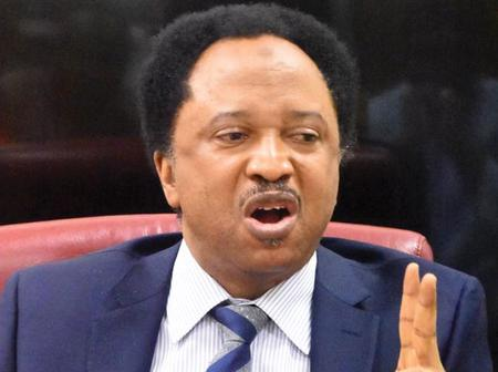 A dynasty of Yoruba & Fulani People was Founded today in Kano State- Senator Shehu Sani claims