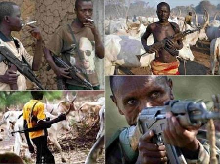 50 Fulani Herdsmen Has Been Arrested By NSCDC For Carrying Guns And Kidnapping