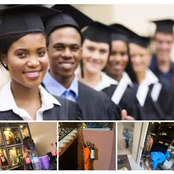 Business Ideas for Fresh College, Polytechnic and University Graduates