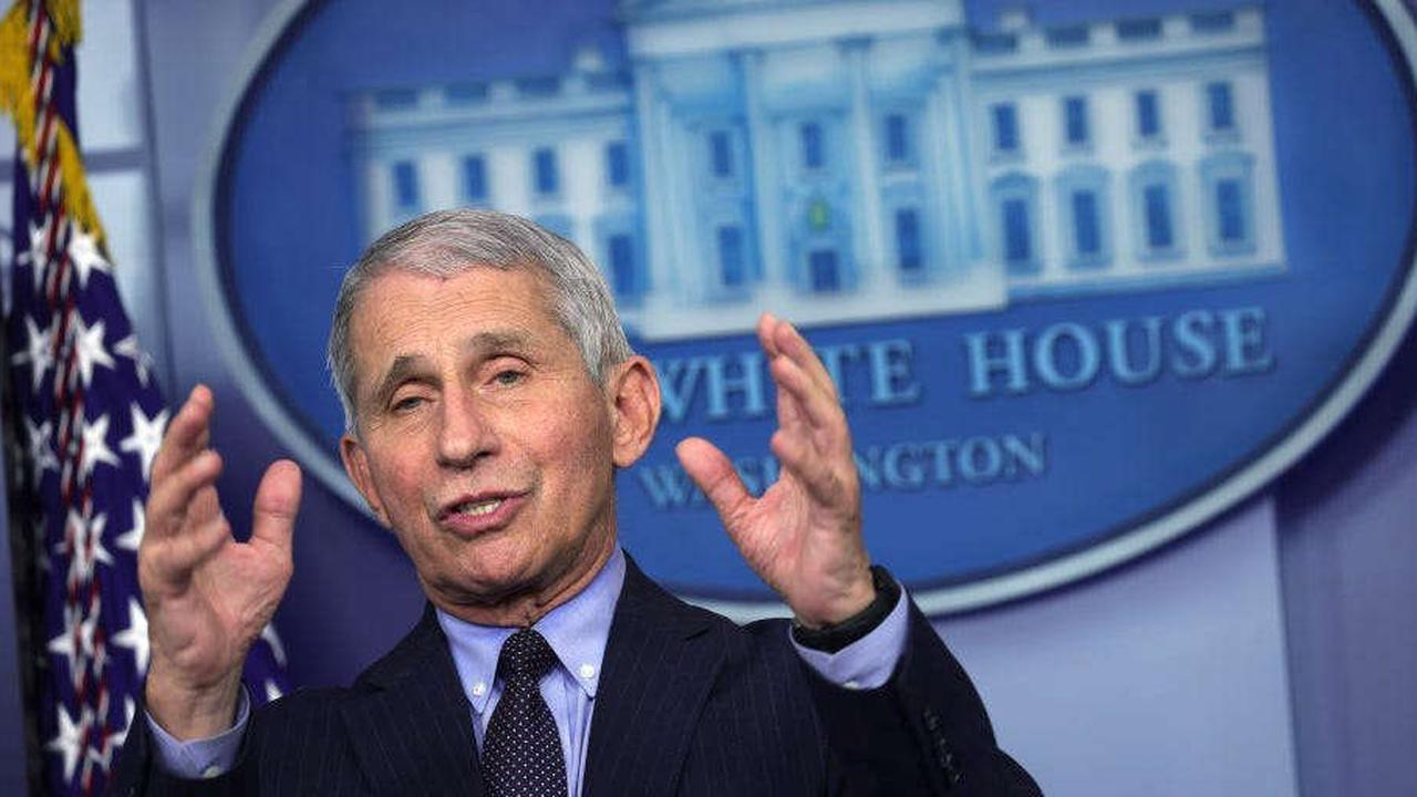 Fauci says India needs other countries to 'chip in' to help the country curb COVID-19 spread
