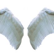 Midnight Prayer: Commanding Your Angels To Work For You This Night