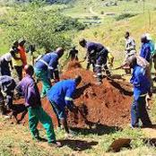 Impossible for 50 People to Bury in Rural Areas as Digging and Burrying Done Manually - opinion