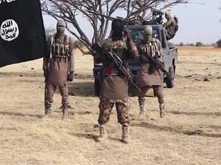 Tragedy:43 farmers killed in Borno state