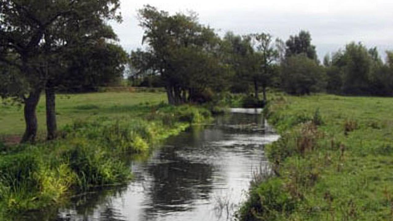 Eton College plan to sell off 500 acres of unspoilt East Sussex countryside for 3,000 homes could 'wipe out' sea trout in one of Britain's most important breeding rivers