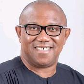 One Mistake PDP Should Avoid In 2023 With Peter Obi