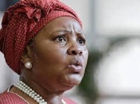 Opposition Parties Want Mapisa-Nqakula Fired Over Trip To Zimbabwe
