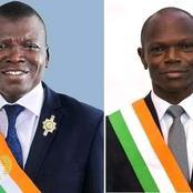 Résultats des législatives : un sénateur RHDP bat le candidat officiel du RHDP