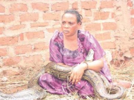 Video: lady found breastfeeding a snake